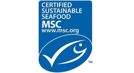 Lund's Fisheries Now Proud to Offer MSC-Certified Illex Squid